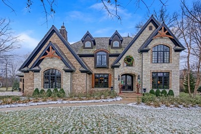 Lemont Single Family Home For Sale: 1318 Cypress Drive