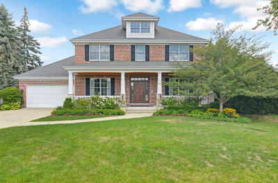 Glen Ellyn, Wheaton, Lombard, Winfield, Elmhurst, Naperville, Downers Grove, Lisle, St. Charles, Warrenville, Geneva, Hinsdale Single Family Home For Sale: 529 West 56th Street