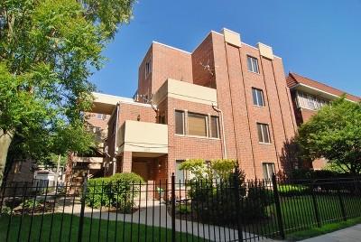 Oak Park Condo/Townhouse For Sale: 407 South Oak Park Avenue #G