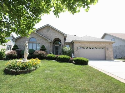 Orland Park Single Family Home For Sale: 14207 Oldham Road