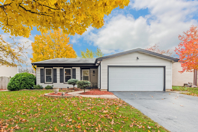 Carol Stream Single Family Home Price Change: 926 Valley View Trail