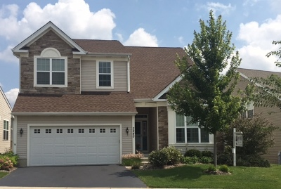 Elgin Single Family Home For Sale: 3840 Valhalla Drive