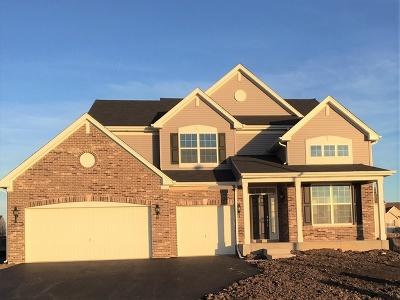 Joliet Single Family Home For Sale: 017 Buckingham Road