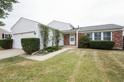 Schaumburg Single Family Home For Sale: 2012 Briar Hill Drive