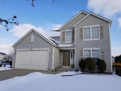 Romeoville Single Family Home For Sale: 1651 Amaryllis Drive