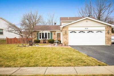 Carol Stream Single Family Home For Sale: 616 Glen Flora Drive