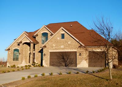 Monee Single Family Home For Sale: 26245 South Sandy Lane