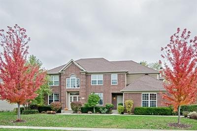 Elgin Single Family Home For Sale: 847 Oak Ridge Boulevard