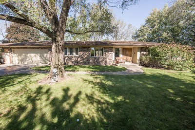 Downers Grove Single Family Home For Sale: 8405a Kearney Road