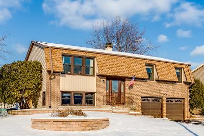 Hoffman Estates Single Family Home For Sale: 1800 Burr Ridge Drive
