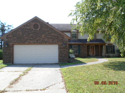 Crete  Single Family Home For Sale: 3131 Bending Creek Trail