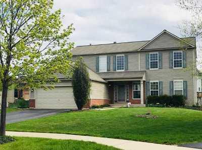 Plainfield Single Family Home For Sale: 11519 Glenn Circle