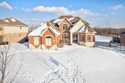 Lemont Single Family Home For Sale: 13073 Klappa Drive