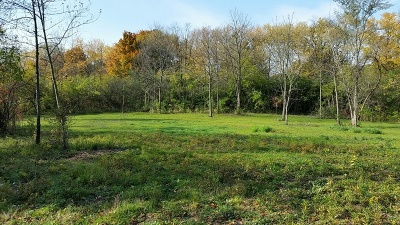 Residential Lots & Land For Sale: 26094 North Midlothian Road