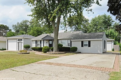 Plainfield Single Family Home For Sale: 23928 West Renwick Road