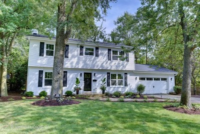 Hinsdale Single Family Home For Sale: 129 South Adams Street