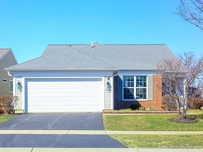 Huntley Single Family Home For Sale: 13117 Silver Birch Drive