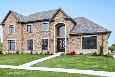 Naperville Single Family Home For Sale: 1503 Shiva Lane