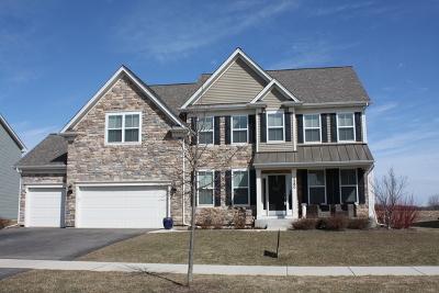 Elburn Single Family Home For Sale: 1360 Spalding Avenue