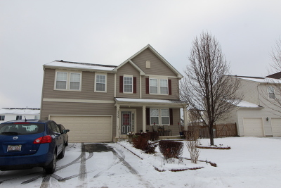 Plainfield Single Family Home For Sale: 14539 Independence Drive