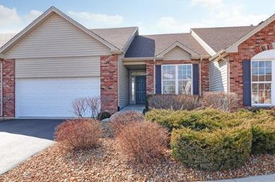 Lockport Condo/Townhouse For Sale: 16702 Placid Court #2