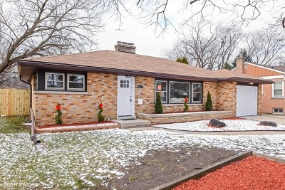 Bensenville Single Family Home For Sale: 234 Tioga Avenue