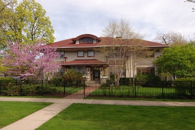 Oak Park Single Family Home New: 703 North East Avenue