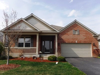 Orland Park Single Family Home For Sale: 9252 Bundoran Drive