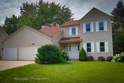 Elgin Single Family Home For Sale: 940 Patricia Avenue