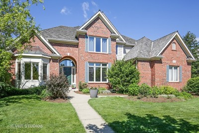 South Elgin Single Family Home For Sale: 662 Waters Edge Drive
