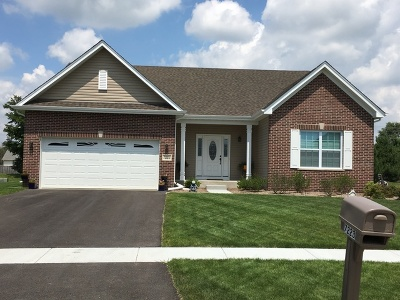 Plainfield Single Family Home For Sale: 25501 West Rock Drive West