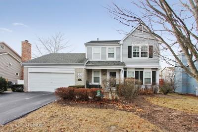 Mundelein Single Family Home New: 325 Bingham Circle
