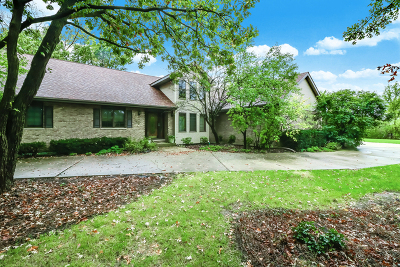 Palos Park Single Family Home Contingent: 12300 South Wolf Road