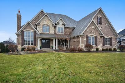 St. Charles Single Family Home For Sale: 5n002 Prairie Lakes Boulevard