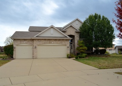 Mokena Single Family Home For Sale: 10605 Lowery Court