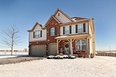 Joliet Single Family Home For Sale: 1304 Goldfield Lane