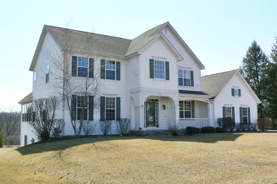West Dundee Single Family Home For Sale: 1431 Fairhills Drive