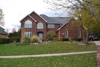 Mokena Single Family Home For Sale: 20922 South Tail Feathers Drive