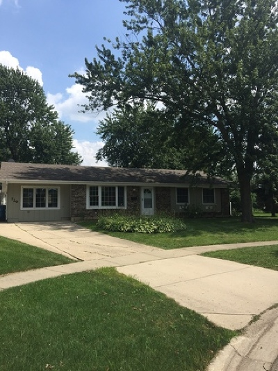 Schaumburg Single Family Home For Sale: 529 Carr Court