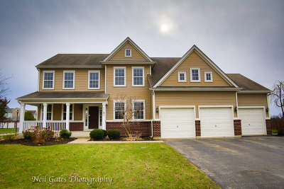 Huntley Single Family Home Price Change: 11191 Fitzgerald Lane