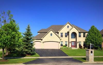 North Aurora Single Family Home For Sale: 711 Bennett Drive