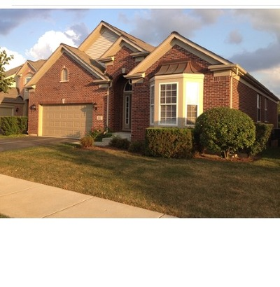 Orland Park Single Family Home For Sale: 9305 Tandragee Drive