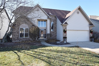 South Elgin Single Family Home For Sale: 662 Lake Ridge Drive