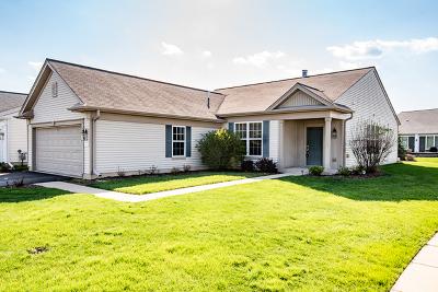 Huntley Single Family Home New: 12261 Azalea Ridge