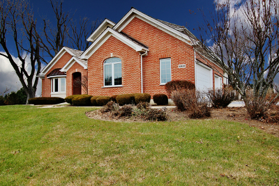 Woodstock Single Family Home For Sale: 10820 Bull Valley Drive
