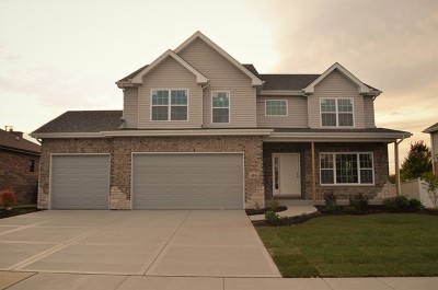 Lockport Single Family Home For Sale: 16936 Lilac Lane