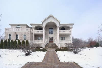 Oak Brook Single Family Home For Sale: 16 Tuscan Court