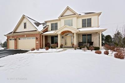 Geneva Single Family Home For Sale: 972 Bluestem Drive