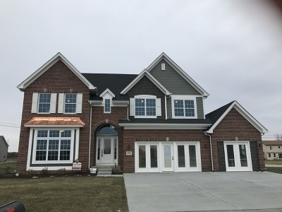 Minooka, Channahon Single Family Home For Sale: 26441 South Settlers Drive