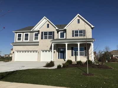 Channahon Single Family Home For Sale: 26431 South Settlers Drive